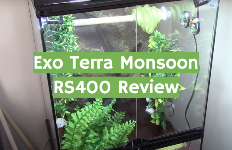 Exo Terra Monsoon RS400 Review