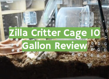 Zilla Critter Cage 10 Gallon Review