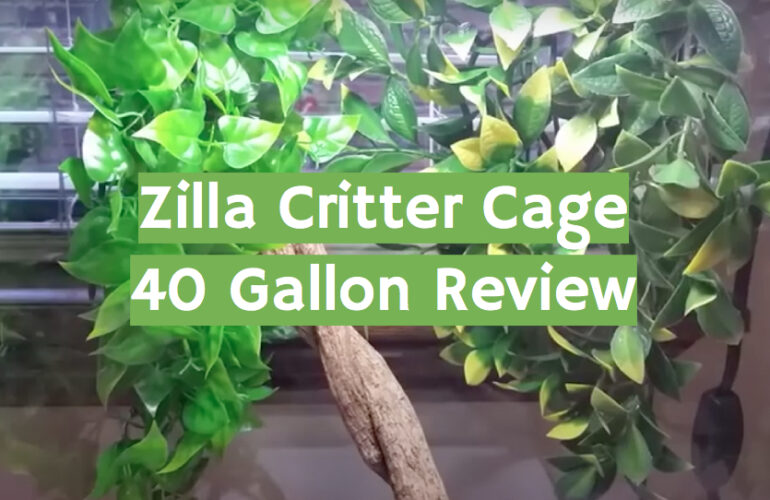 Zilla Critter Cage 40 Gallon Review