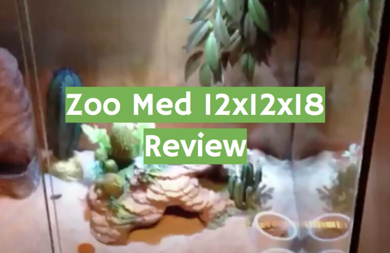 Zoo Med 12x12x18 Review