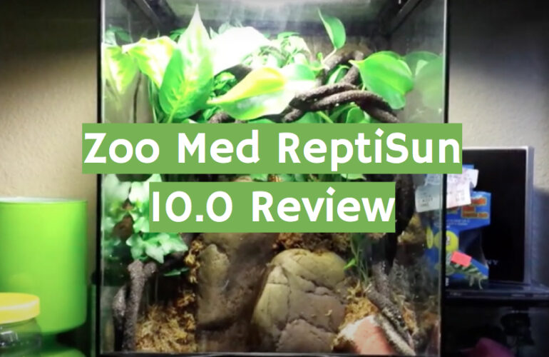 Zoo Med ReptiSun 10.0 Review